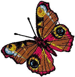 Motýl 7