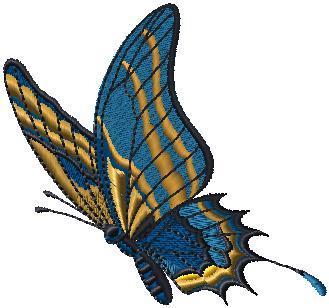 Motýlek 3