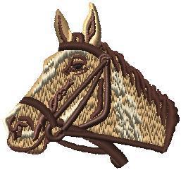 Kůň hlava 1