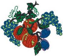 Ovoce 12