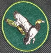 Kachna 1