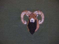 muflon hlava 2