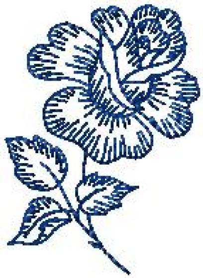 Růže obrys 3