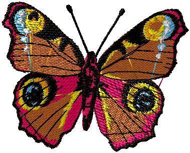 Motýl 12