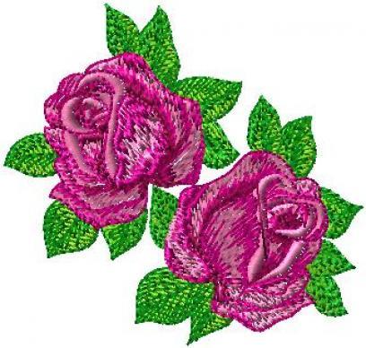 Růže plné