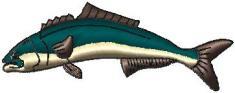 ryba 11