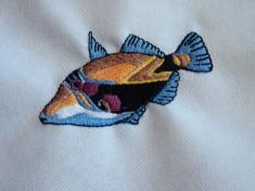 ryba 9