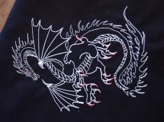 čínský drak 1