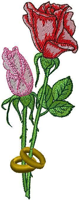 Růže svatební