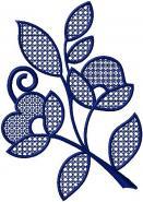 květy - cibulák