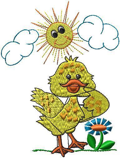 Kachně na sluníčku