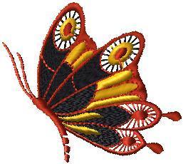 Motýlek 4
