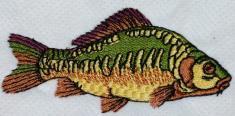 Ryba 7