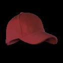 49 AF red dhalia
