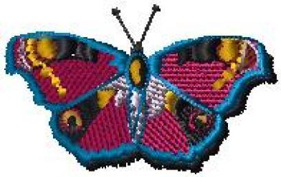 Motýlek 6