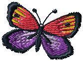 Motýl 3