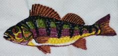 Ryba 6