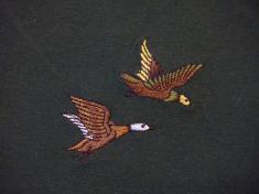 kachny v letu