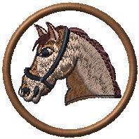 Kůň hlava 2