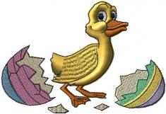 vylíhlá kachna
